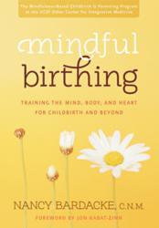 Jacket Image - Mindful Birthing by Nancy Bardacke