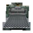 SCHWABE Die Cutting Roller Press - OutFeed