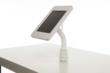 Lilitab Surface iPad kiosk