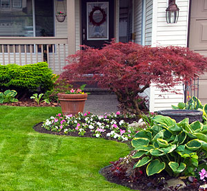 7 foundation landscaping tips for healthy foundation for Plants for landscaping around house