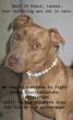 Lennox, breed discriminatory legislation, BSL, BDL, pit bull, Best Friends Animal Society