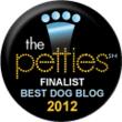DOGTV, TV for dogs, DOGTV for dogs, petties badge