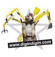 Book Cover Design of Digindigin.Com