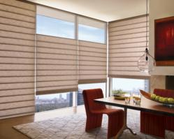 Alustra Vignette Modern Roman shades Dallas Fort Worth TX
