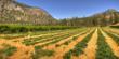 Agri-tour, Covert Farms: Complete Okanagan Experience Tour