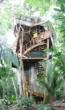 tree house, houses, homes, building, custom home, amazing,cool, eco friendly, environmentally, sustainable canopy living.