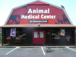 Large Animal, Small Animal & Exotics