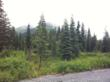 Granite Creek Campground, Seward, AK, where Valerie Sifsof was last seen on July 7, 2012 before her disappearance