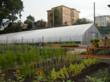 Rimol Greenhouse System Helps Grow Dorchester's ReVision Urban Farm