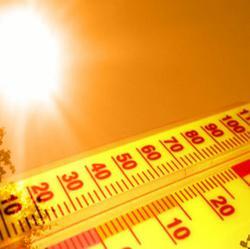 Heat Wave Safety