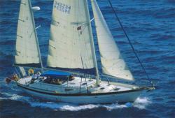 Sailing bout on the Italian Coast