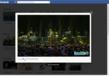 Baeblemusic Launches Video-Focused Facebook App