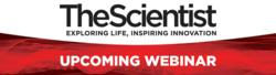 protein biomarkers free webinar with experts by the scientist