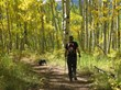 Hiking Dark Canyon Trail in a golden aspen forest