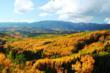 """September Splendor in the Rockies"" Showcases Colorful..."
