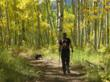 Hiking Dark Canyon Trail in a golden aspen forest.