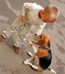 Young boy with pet dog.