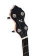 Islander Ash Leaf banjo