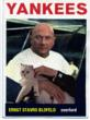 007's nemesis, Blofeld, takes over baseball, armed only with a white cat.