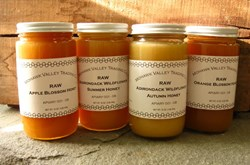 Raw Honey -  Mohawk Valley Trading Co.