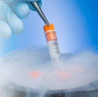 egg freezing and frozen donor eggs frozen egg bank