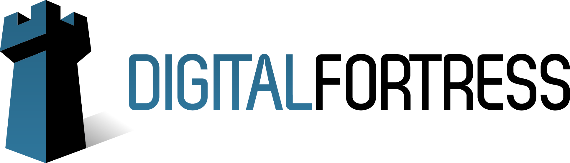 Digital Fortress Announces New CEO