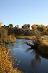 creek restoration, fishery enhancement, stream mitigation, land management, fisheries research