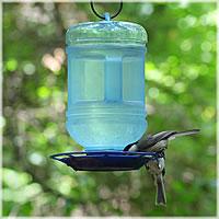 Bird waterer