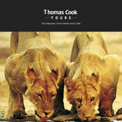The Best of South Africa Tour by Thomas Cook Tours