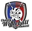 Project Walk-Kansas City Hosts Charity Wiffleball Tournament for Spinal Cord Injury Recovery