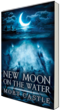 Horror book New Moon on the Water by Mort Castle