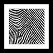 Framed fingerprint