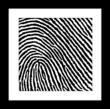 Framed fingerprint