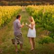 margaret river wine, margaret river vineyards, where to stay in margaret river, travel to margaret river, what to do in margaret river