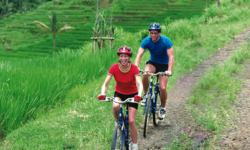 Cycling through the Balinese rice terraces