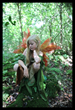 Fairy Photographer on Location at Legend Photography