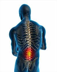 If a cure for back pain, including lower back pain, upper back pain, middle back pain, side back pain, pain in back of neck, or a combination of back and neck pain, sounds good then these free pain relief tips from mike nelson's 'save my back' program can