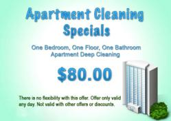professional house cleaning service in atlanta now offering discounts