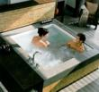 Consonance Two-Seat Combination Whirlpool Tub From Kohler