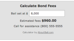 Bail Premium Calculator