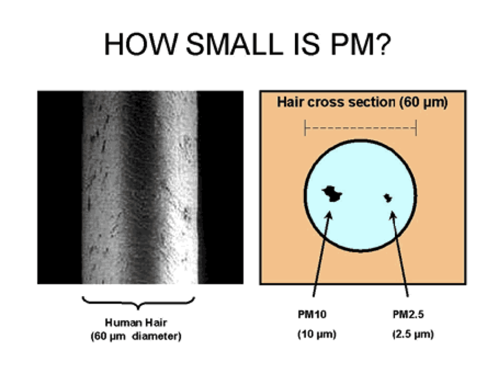 Code of Practice to reduce emissions of PM2.5 from ...  Particulate Matter Diagram
