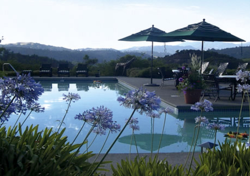 Women's Yoga Retreat in Calistoga, California
