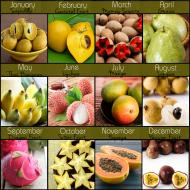 Tropical Fruit of the Month Club
