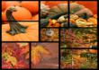 This is a Business Greeting Card with the image of a collage of pumpkins.