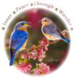Birds of Inner Peace