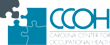 CCOH begins scheduling 2012 Flu Clinics