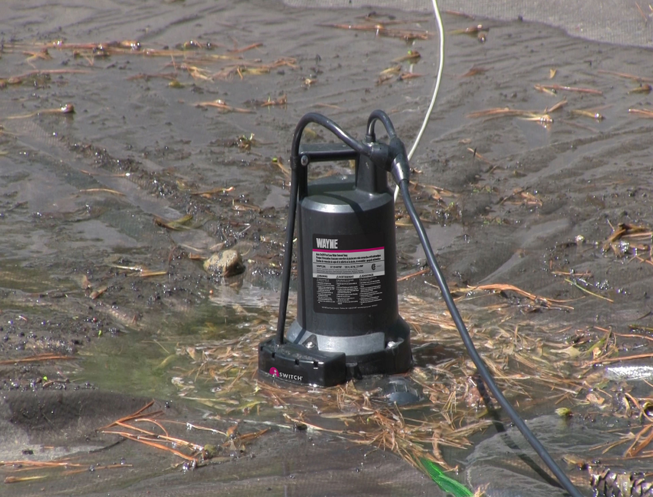 New Wayne Pool Cover Pump Provides Worry Free Operation