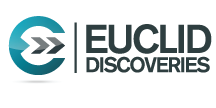 Euclid Discoveries Video Processing