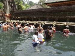 Worshipping in the holy waters of Tirta Empul