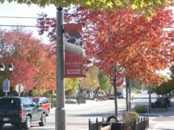 Experience the fall color in Delafield, Wisconsin.